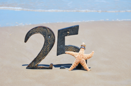 25th Anniversary Vacation Ideas